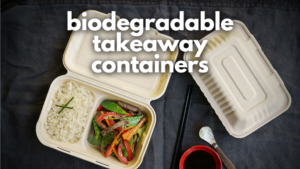 biodegradable takeaway containers header